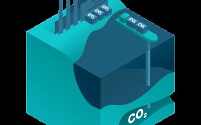 CO2 dissolved